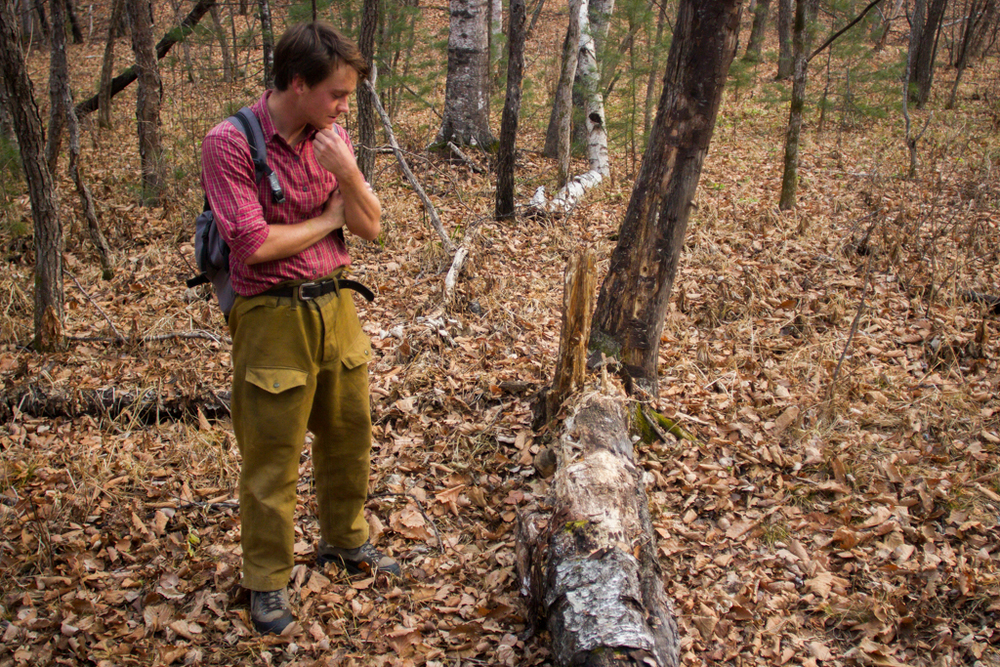 David contemplatively looks over a fallen tree where exactly 36 hours earlier a female tiger and cubs had scratched, played and crossed. Russian government has shut down and banned the use of snares for trapping tigers so WCS's only way to monitor the population is through the use of motion triggered cameras.