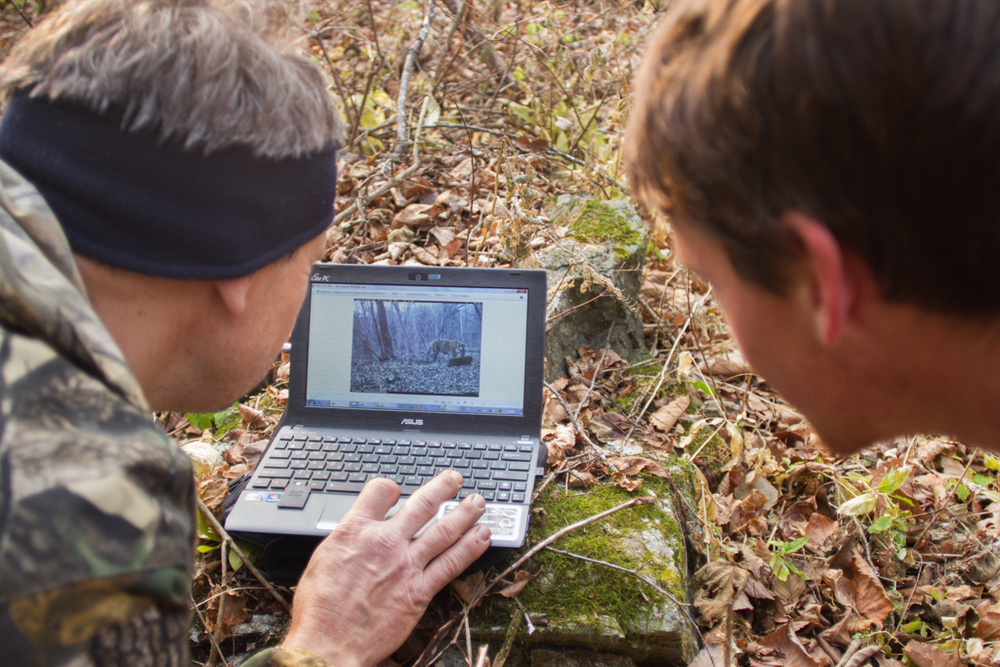 David and Wildlife Conservation Society scientist, Nicholi, look at a recent image that a trail camera captured of a tiger cub. The cub, his mother, and sibling(s?) passed in front of this camera a day and a half earlier.