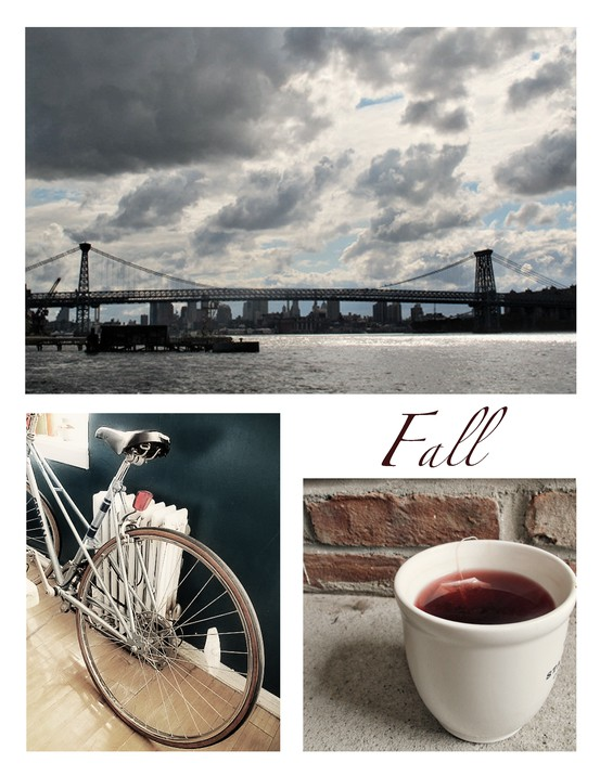 Fall Manhattan Bridge, Indoor Bicycle, Pink Tea