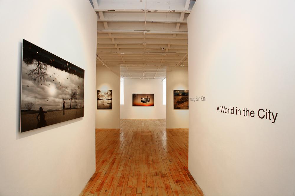 Emmanuelfremin gallery (New York Chelsea)2012