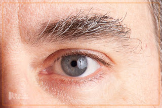 cornicello_blog_catchlight-2-3.jpg