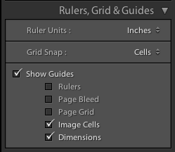 In the Rulers, Grid & Guides section I set my Grid Snap to Cells and turn on the Image Cell guides and Dimensions.