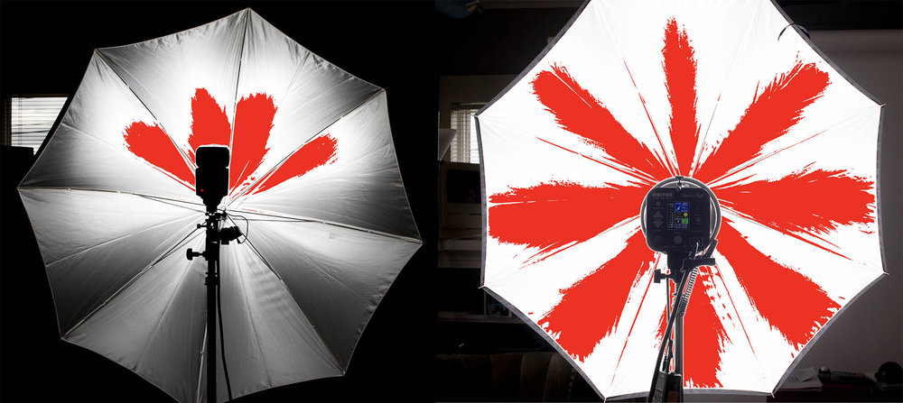 speed light on the left and Einstein on the right in a medium size umbrella.