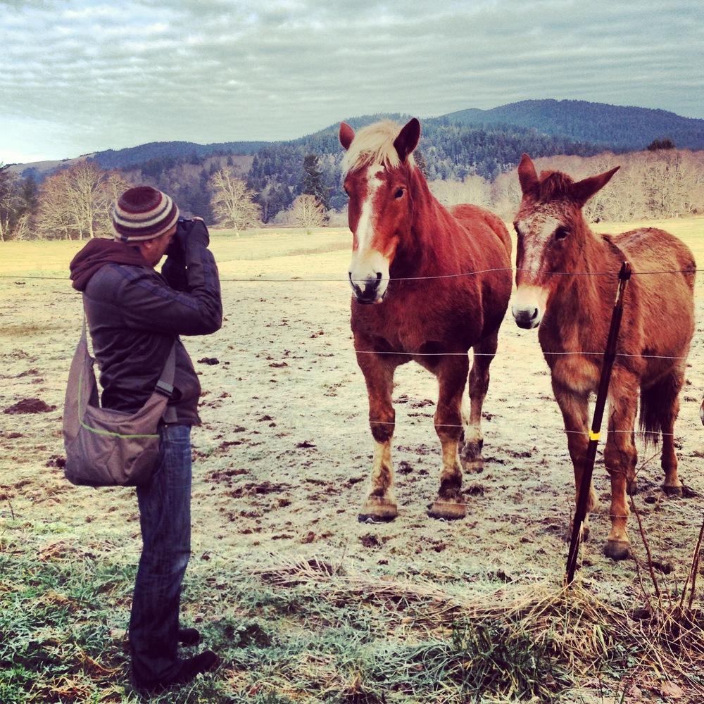 The Horse Whisperer… or, photographer PhotoJosephby Alenka Linaschke, www.alenkadesign.com