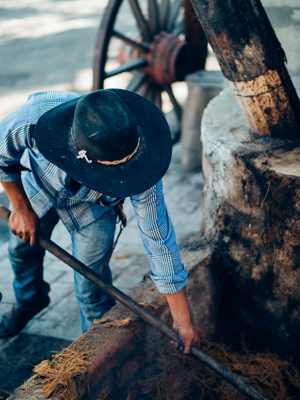 We visited La Costumbre, a Mezcal making still. Here a worker is shoveling steaming hot remnants from previously mashed piñas which will be used to cover the new piñas in the roasting pit.