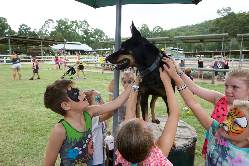 Click Here to Enter The Foxtel Gold Coast Family Day 2015 Photo Gallery - Password Required