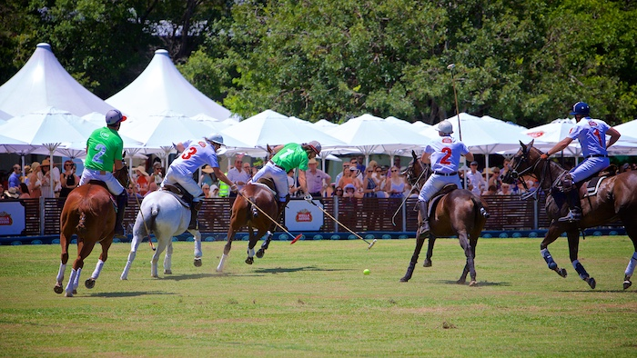 Click here to enter the CGU Polo In The City Photo Gallery - Password Required