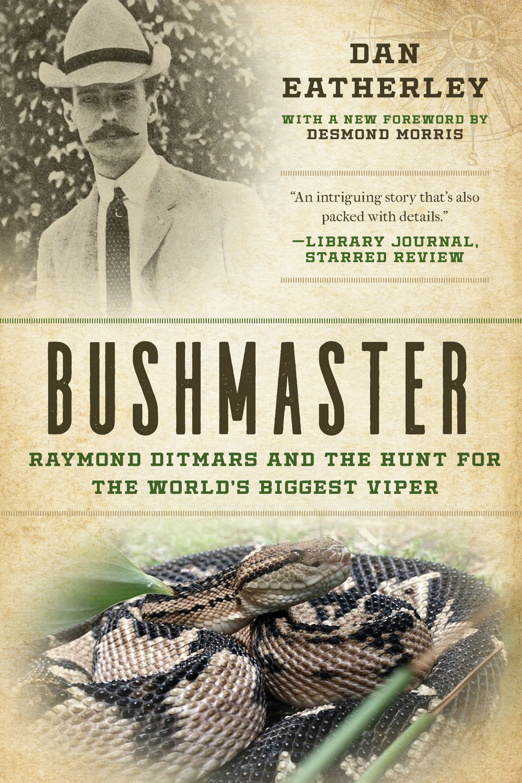 Bushmaster.jpg