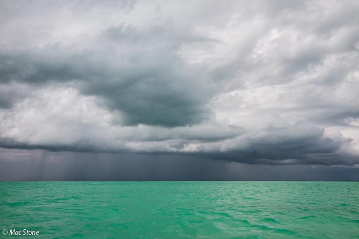MacStone_Florida_Everglades-2138.jpg