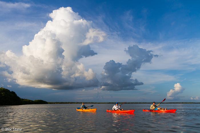 MacStone_Florida_Everglades-8905.jpg