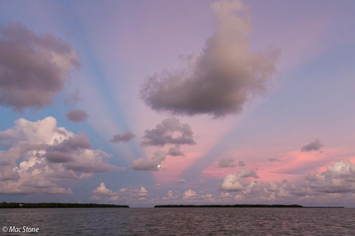 MacStone_Florida_Everglades-8918.jpg