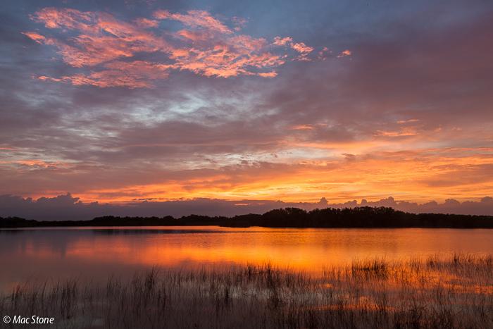 MacStone_Florida_Everglades-4626.jpg