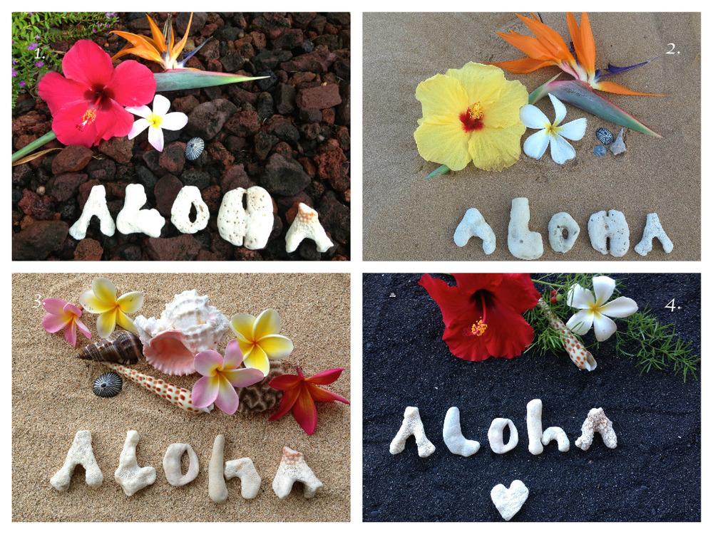 Aloha Series