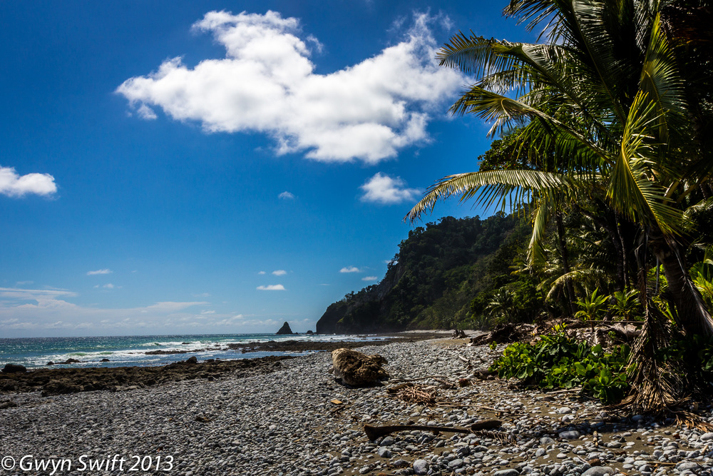 Osa Peninsula , Costa Rica