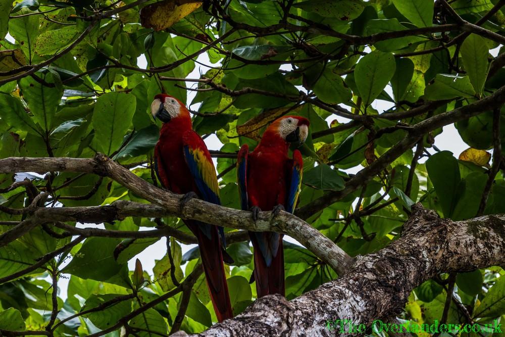 Belize-56.jpg