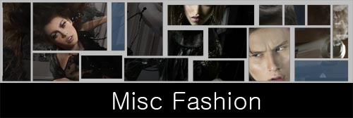 MISC FASHION image  block template v1.jpg