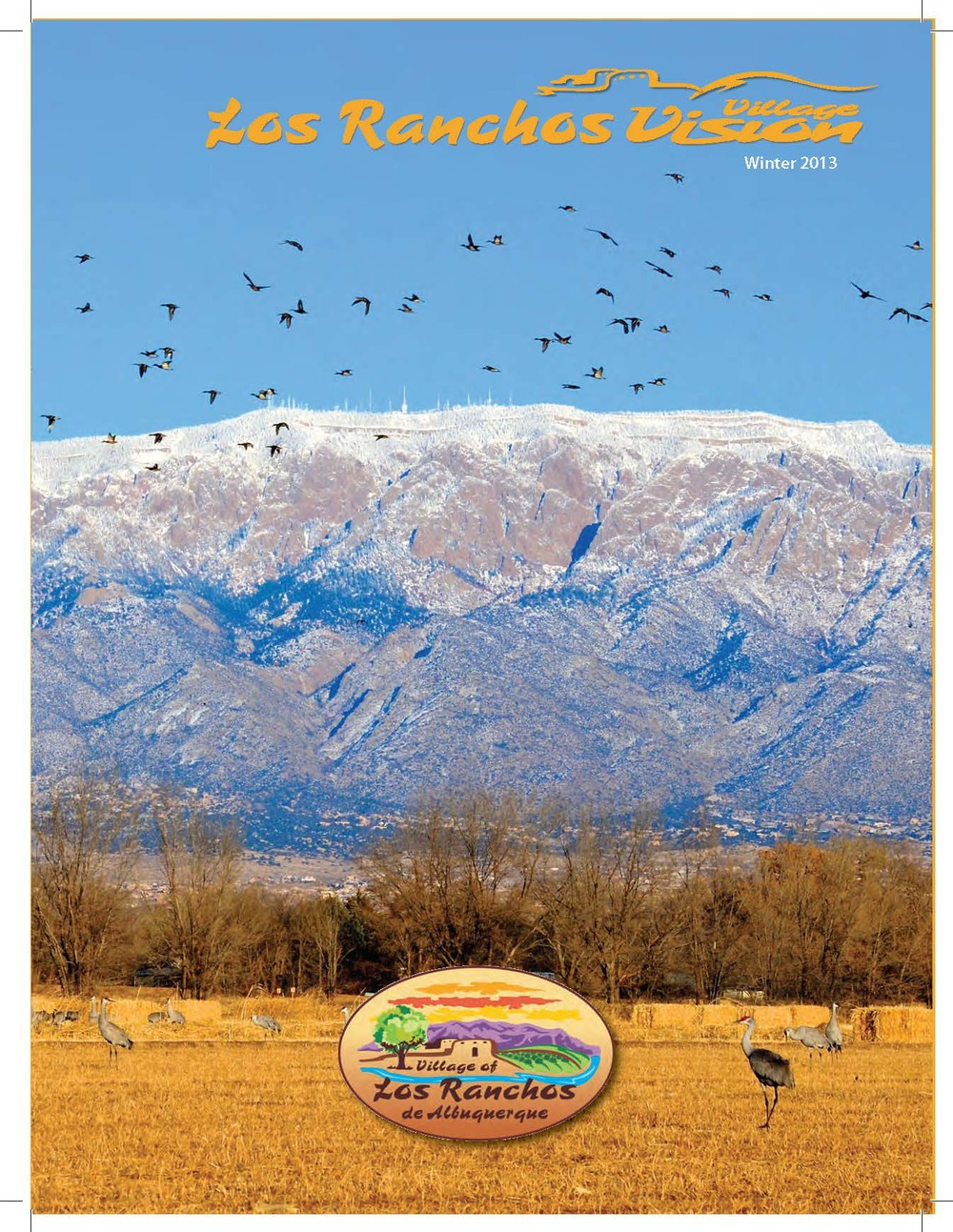 2013 Jan-Feb Vision COVER.jpg