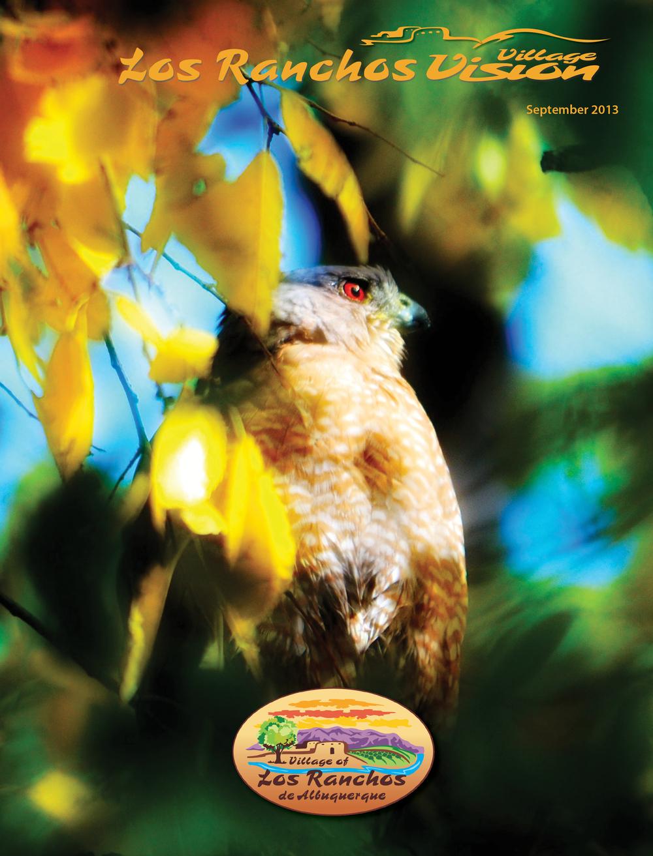 Sept 2013 Vision Cover - final.jpg