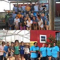 volunteer collage.jpg
