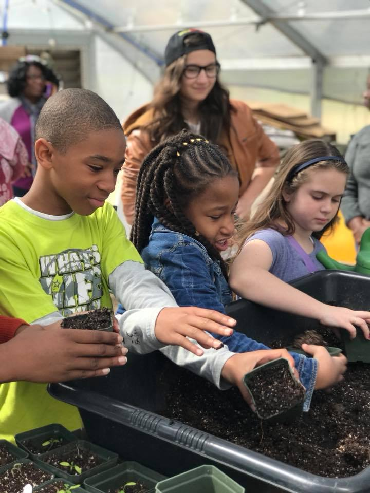 Students potting up plants during Good Food Day.