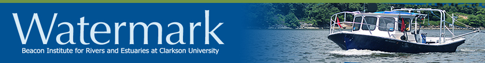 Clarkson University faculty give voice to inspired thinking on water and why we should care.