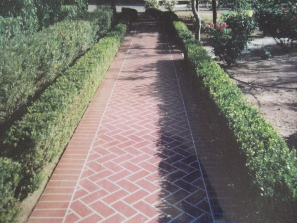 Herringbone brick walk