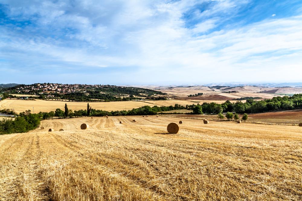 Vescovado Di Murlo, Italy