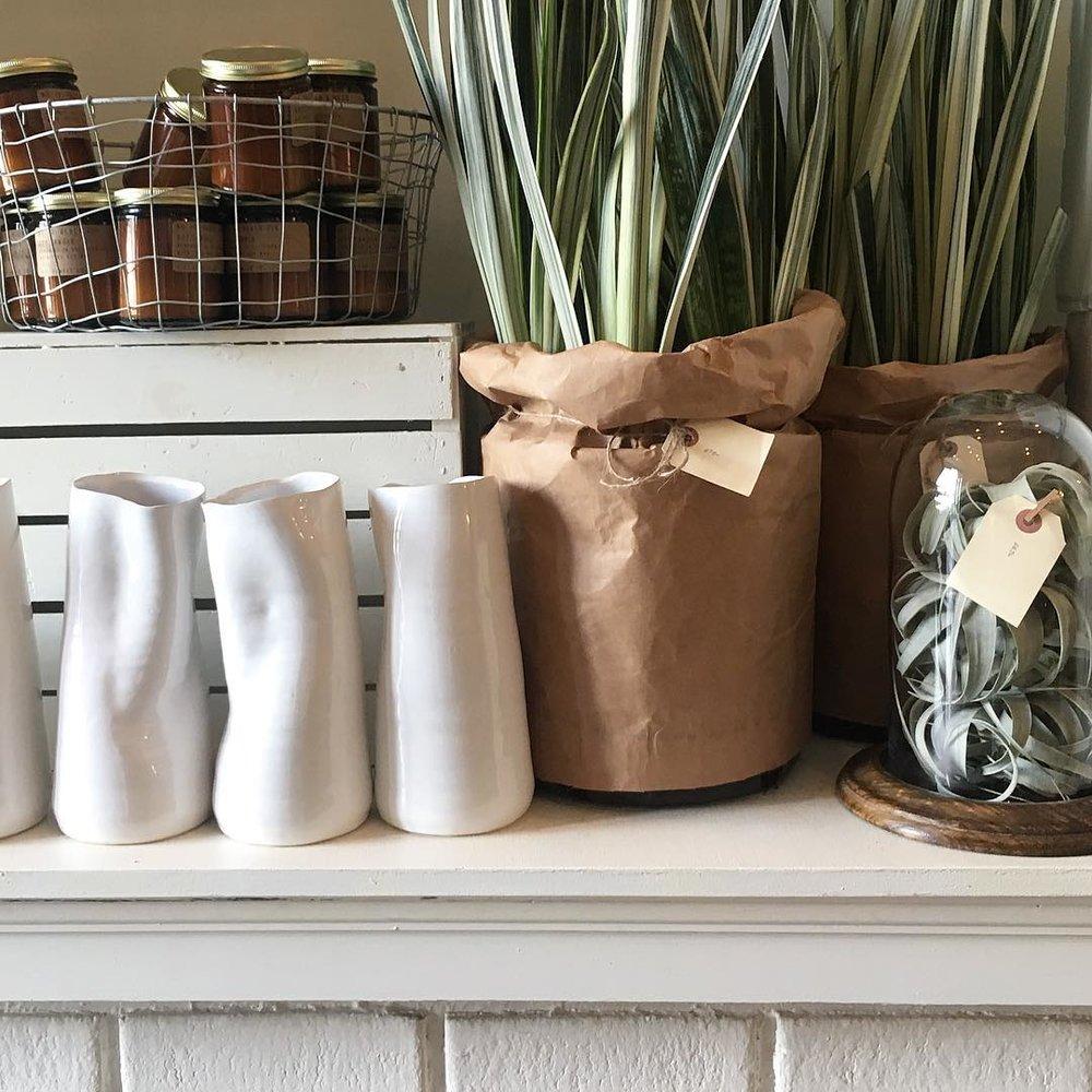 plants and ceramics.JPG