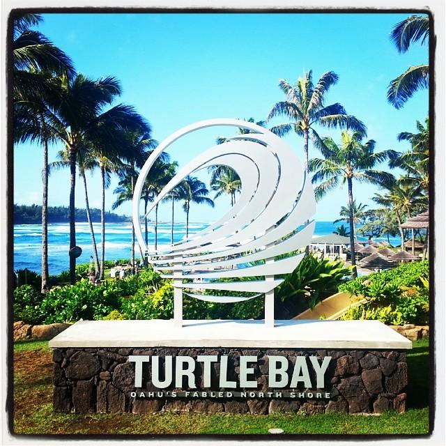 turtlebay.jpg
