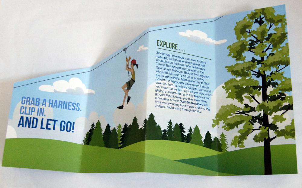 Tree to Tree Brochure