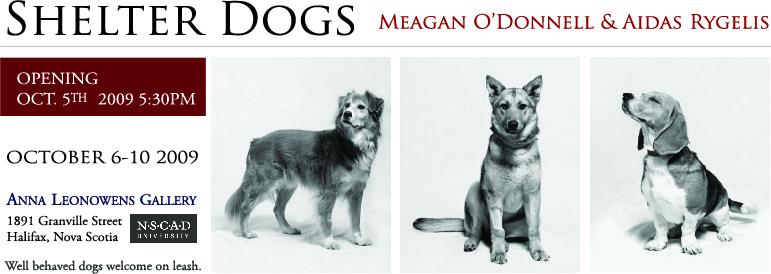 shelter dogs invite.jpg