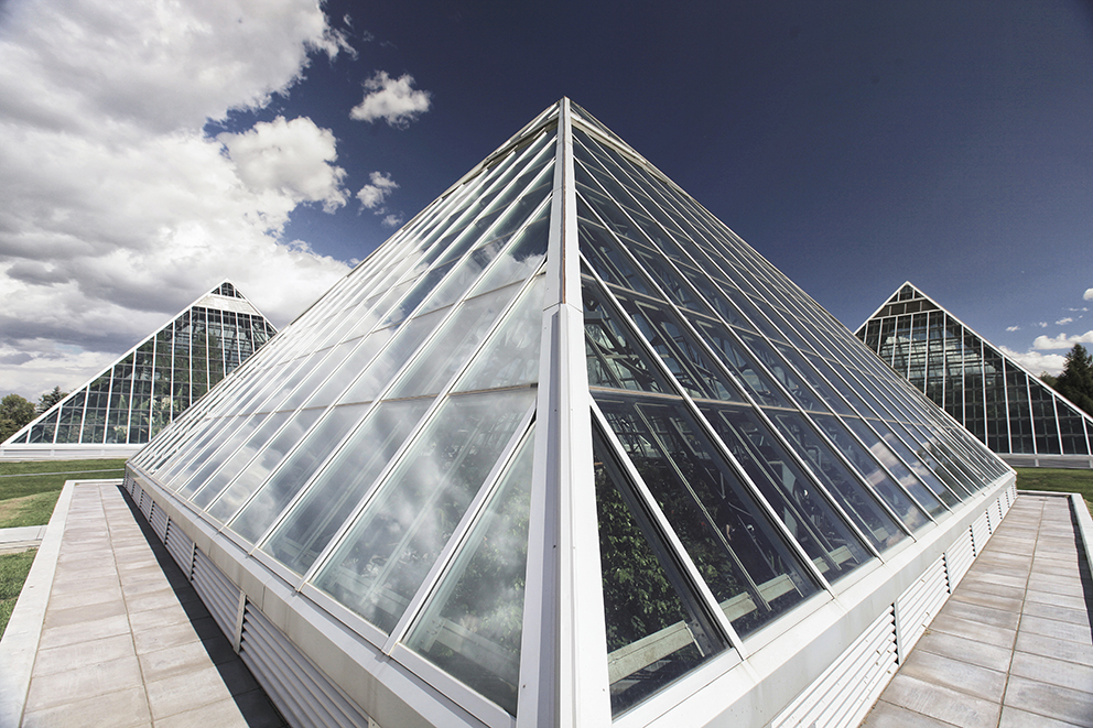 Discover the Muttart Conservatory of Edmonton. Each pyramid offers a unique experience with a year-round escape into the beauty of the world's plant life.