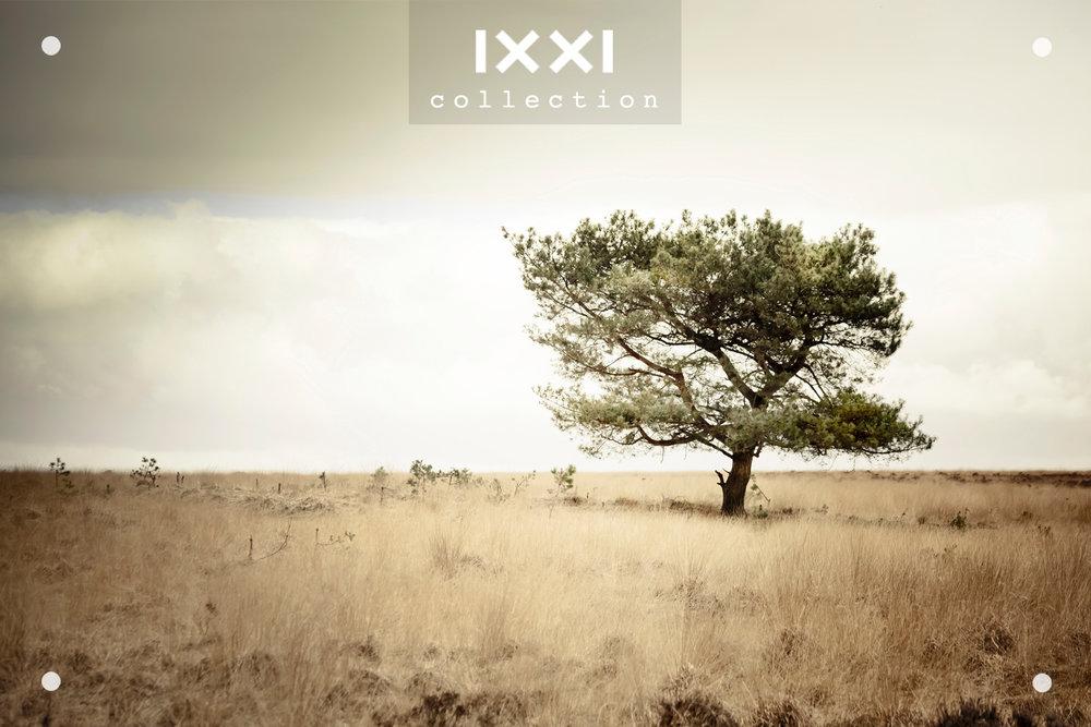 IXXI collection  Solitude