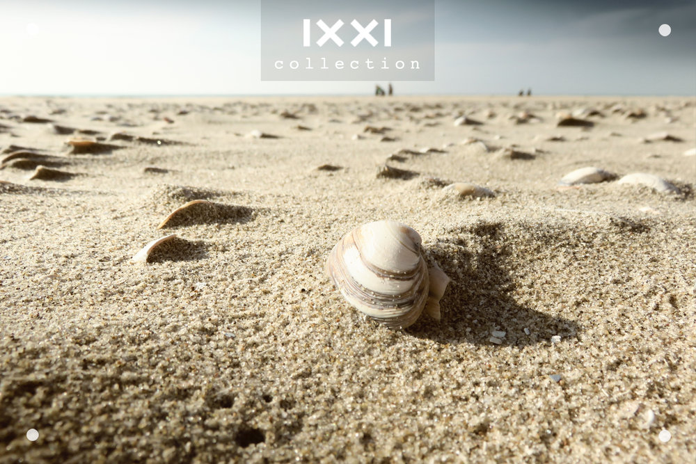 IXXI collection | Shell