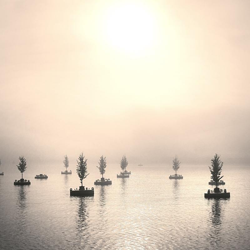 Instagram   Floating forest
