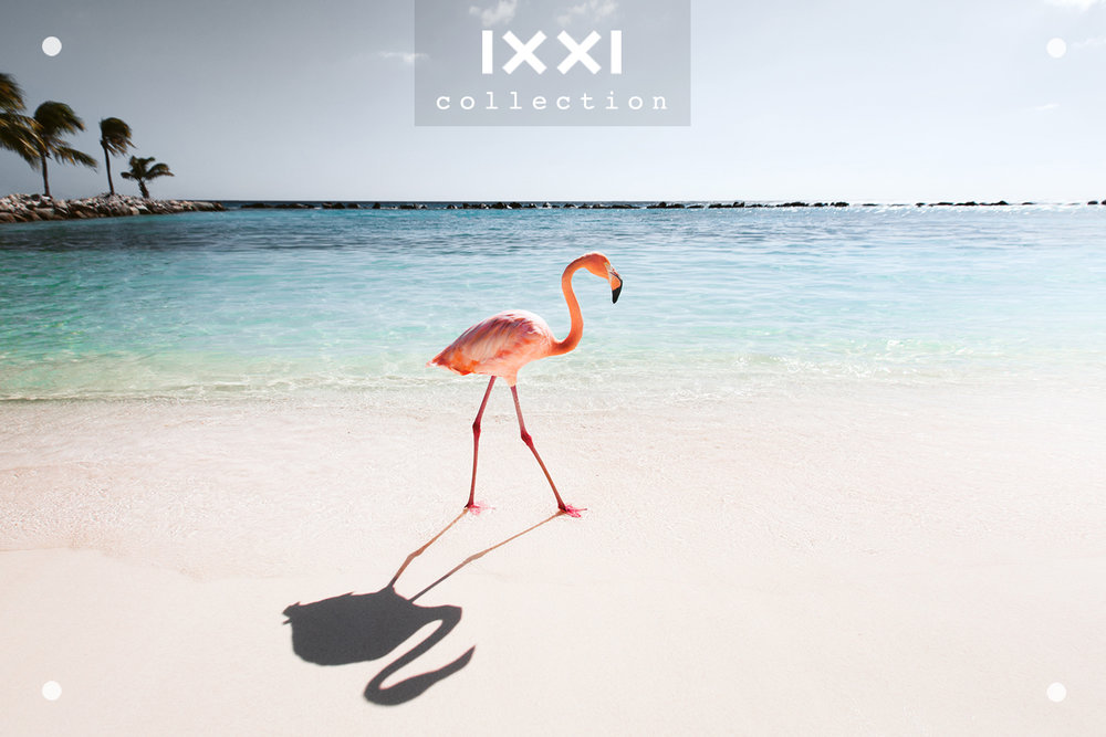 IXXI collection | Tropical Silence - Pink Parade