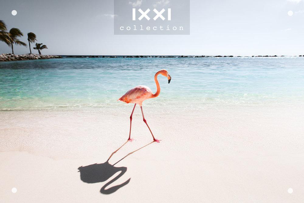 IXXI collection  Tropical Silence - Pink Parade