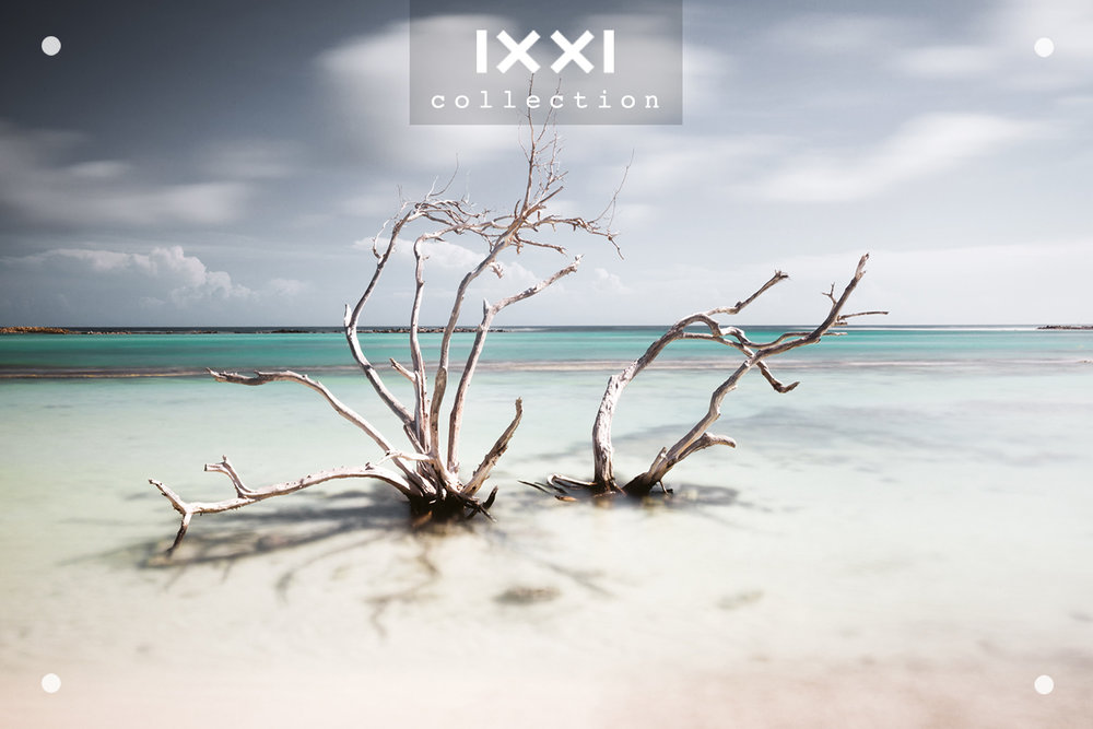 IXXI collection | Tropical Silence - Hatstand
