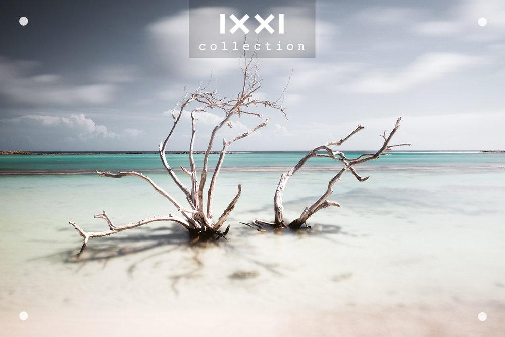IXXI collection  Tropical Silence - Hatstand