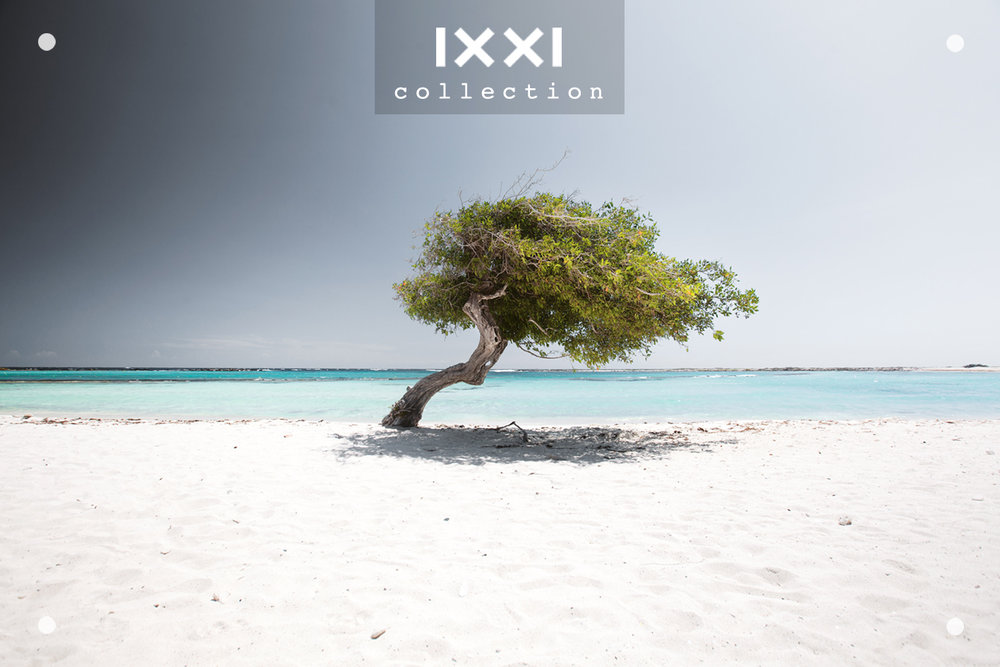 IXXI collection | Tropical Silence - Fofoti