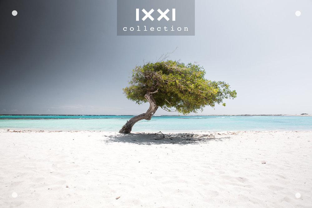 IXXI collection  Tropical Silence - Fofoti