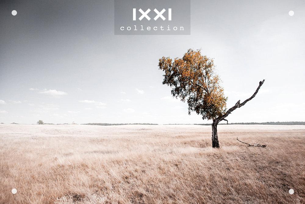 IXXI collection   Silence II - Split