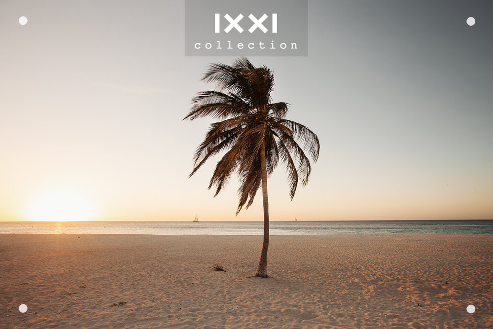 IXXI collection | Tropical Silence - Windbreak