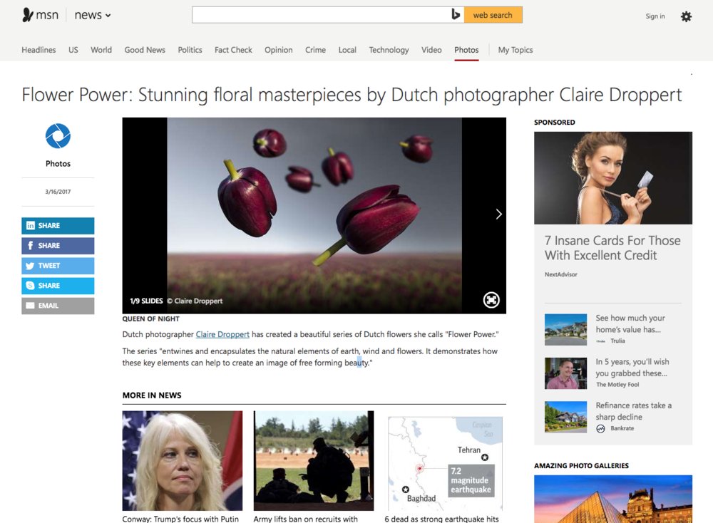 clairedroppert msn feature.png
