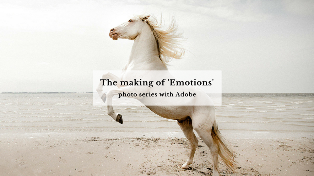 blog_claireonline.nl_emotions_adobe.png