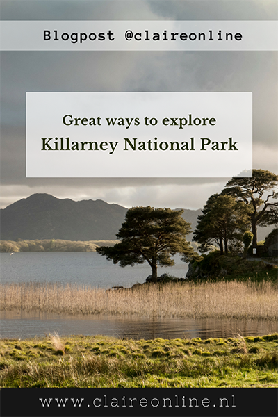 Killarney_national_park_claireonline_pinterest.png