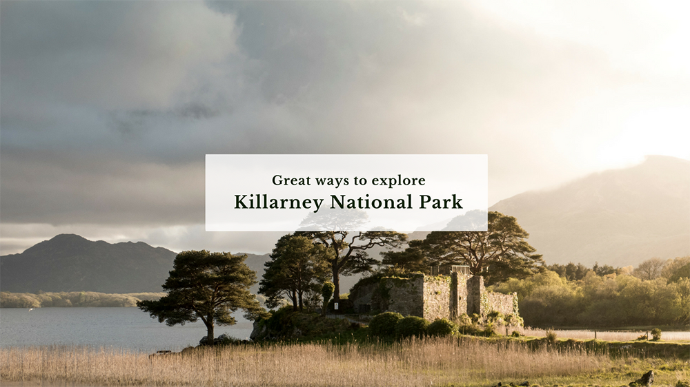 blog_header_killarneyNationalPark.png