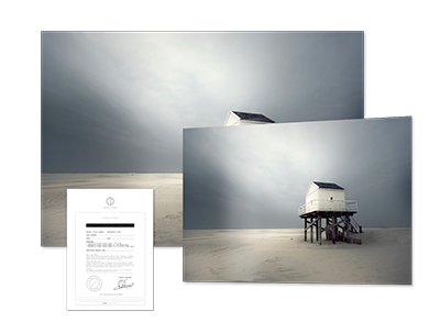 fineartprints-clairedroppert-silenceI.png