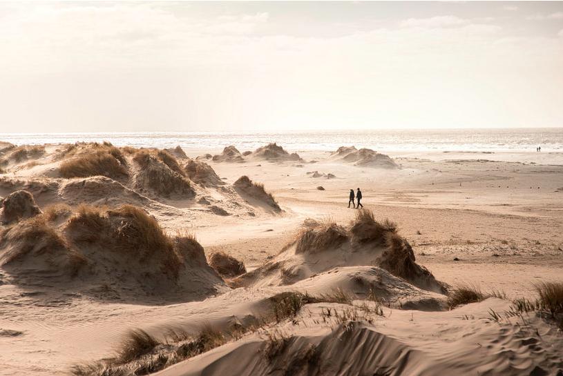 Rømø dunes and beach, Denmark