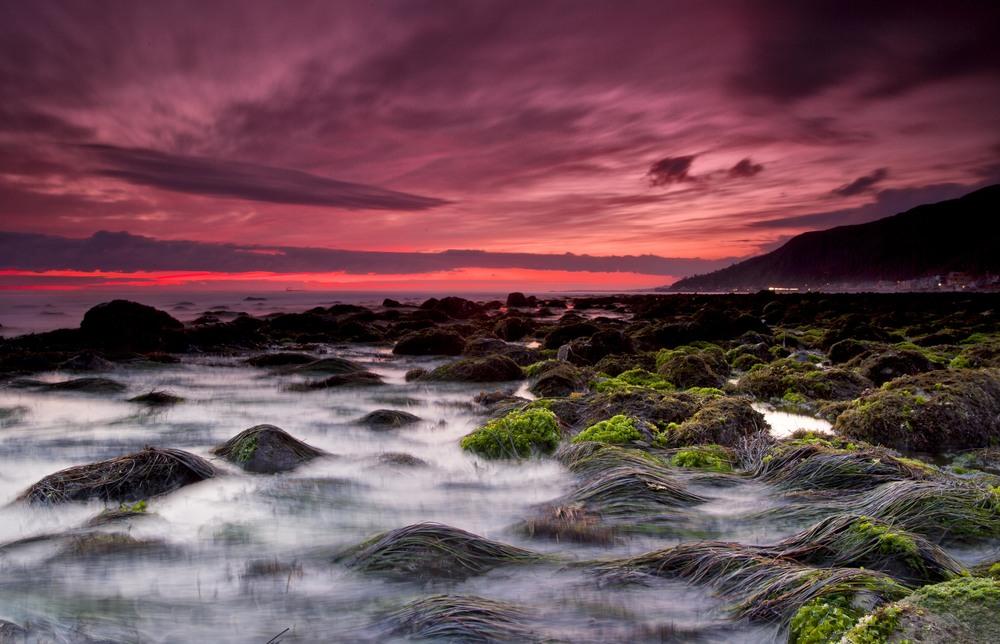 SeagrassSunset.jpg